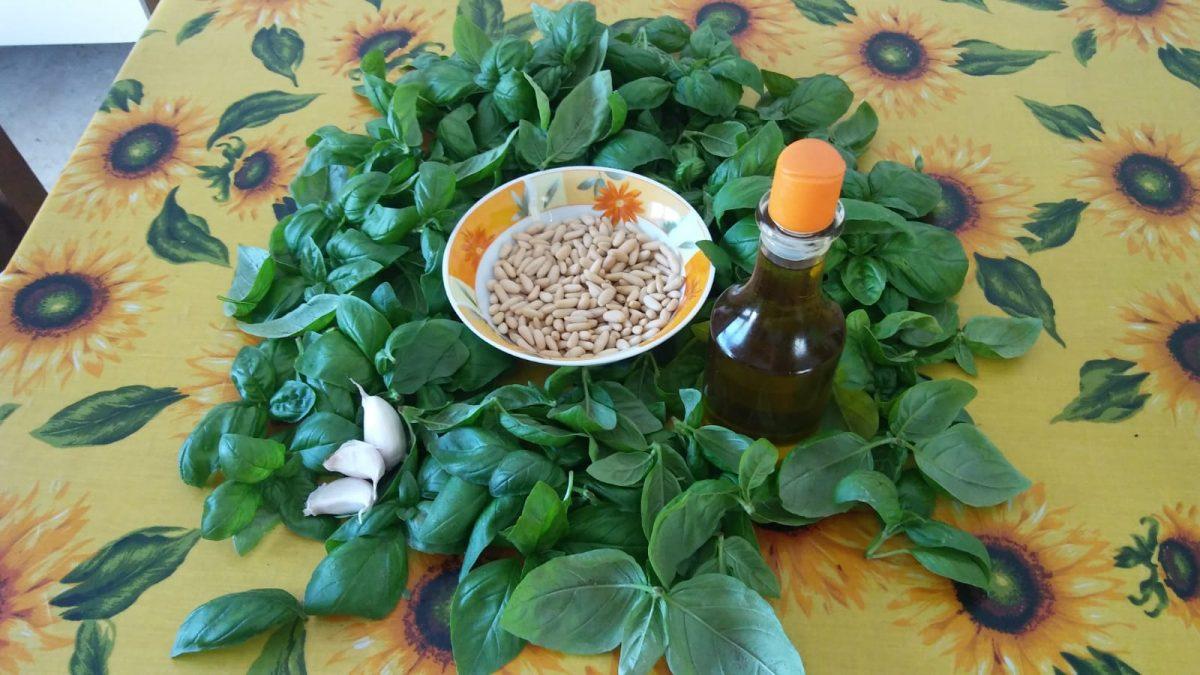 basilico ricette e proprietà benefici olio su tavola